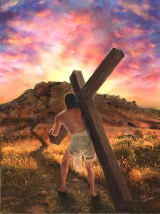 cross&follow