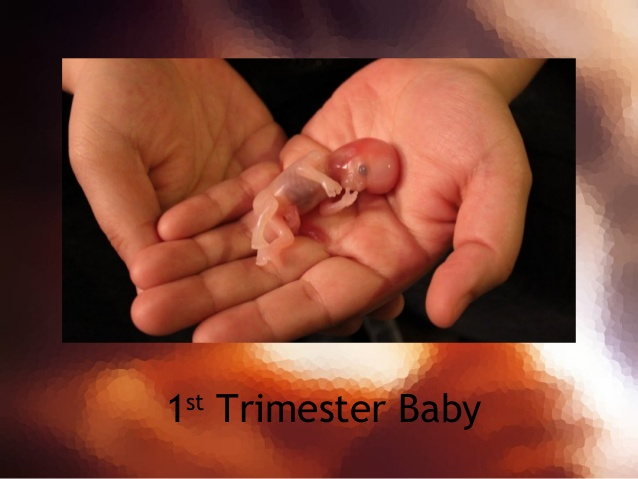 singapore-abortion-facts-35-638